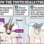 09J_NEWS Tooth Graphic