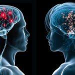 brain-differences-between-sexes