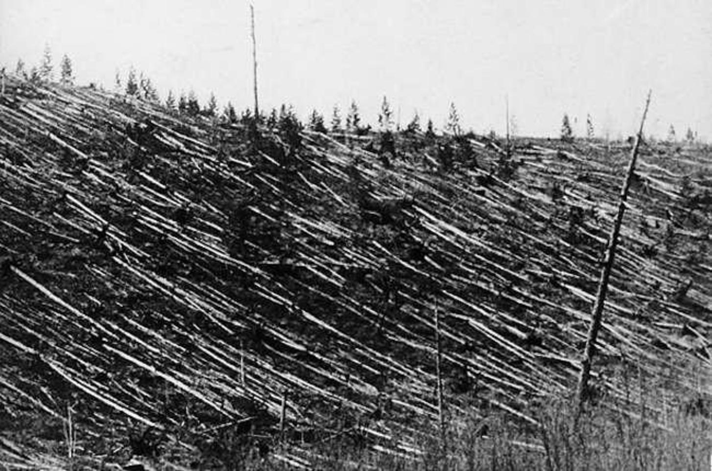 Tunguska Olayı | Bilim Mahzeni